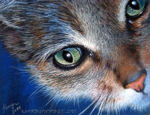 Katze, 18x24, Pastell
