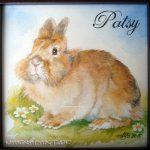 Patsy, 15x15, Aquarell