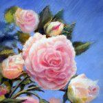 Prowans Rosen, 15x18, Pastell